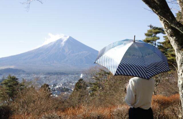 【5/31まで送料無料】母の日のプレゼントには傘がおすすめ!